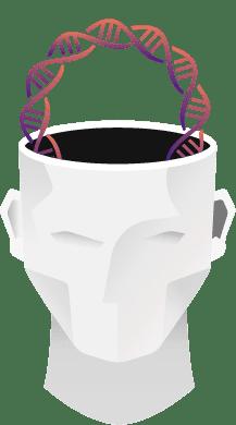 The BioEnergy Code