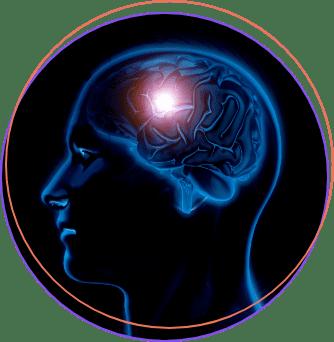 brain-harmony